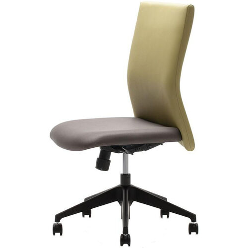 FreeStyle™ Task Chair with Integrated Lumbar Support