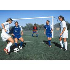 Competition Portable Aluminum Soccer Goal
