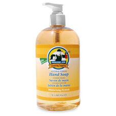 Genuine Joe Antibacterial Moisturizing Liquid Soap - Pump Bottle - 16 oz.