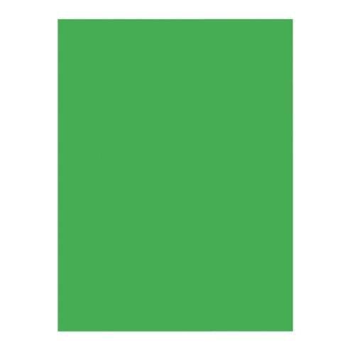 Pacon Construction Paper - 76 lb. - 9'' x 12'' - 50/PK - Green