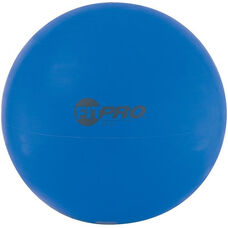 FitPro 95 and Exercise Ball