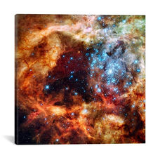 R136 Star Cluster (Hubble Space Telescope) by NASA Gallery Wrapped Canvas Artwork