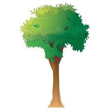 Tree Wall Sticker - 50