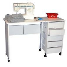Mobile Desk/Workstation