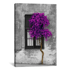 Tree in Front of Window Purple Pop Color Pop by Panoramic Images Gallery Wrapped Canvas Artwork