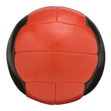 Leather Wrapped Medicine Ball