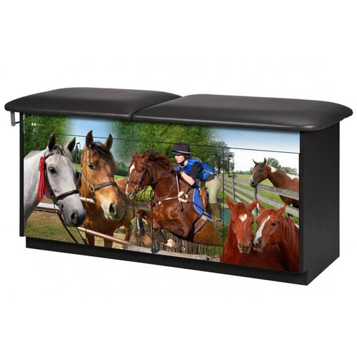 Equestrian Treatment Table - Adjustable Backrest