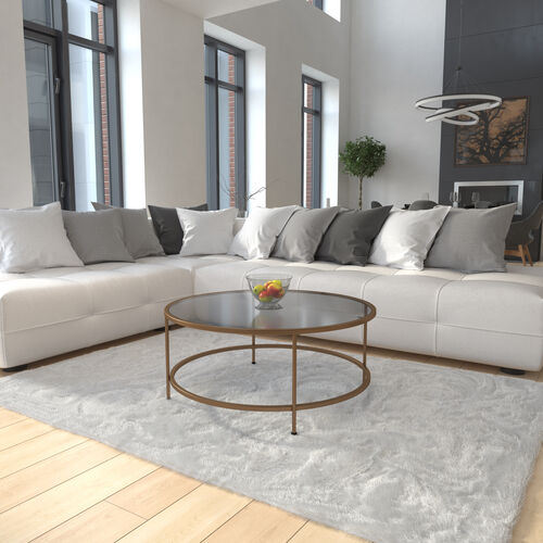 Astoria Collection Round Coffee Table - Modern Glass Coffee Table with Metal Frame