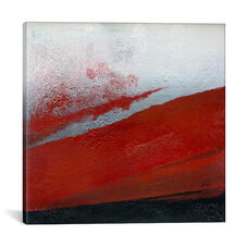 Shades Of Red by Michael Goldzweig Gallery Wrapped Canvas Artwork